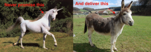never promise a unicorn