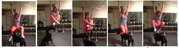 hanging leg raise with sev